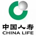 中国人寿花都分公司